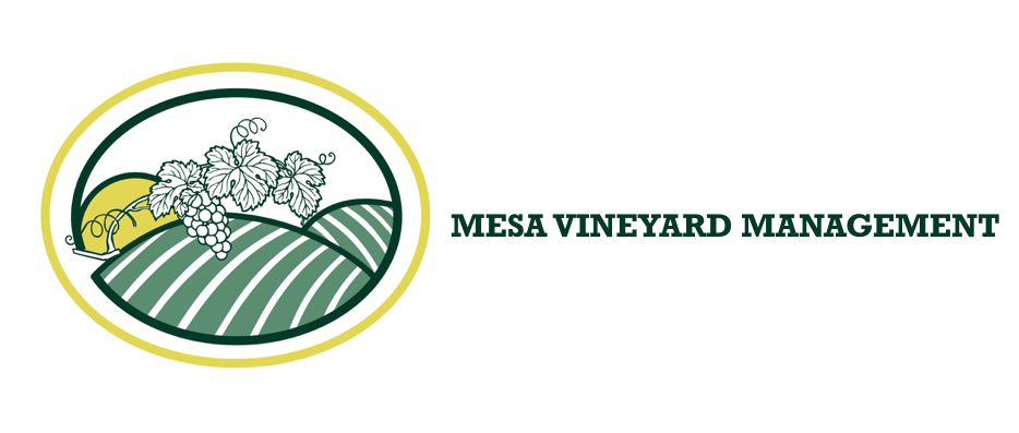 Mesa Vineyard Management